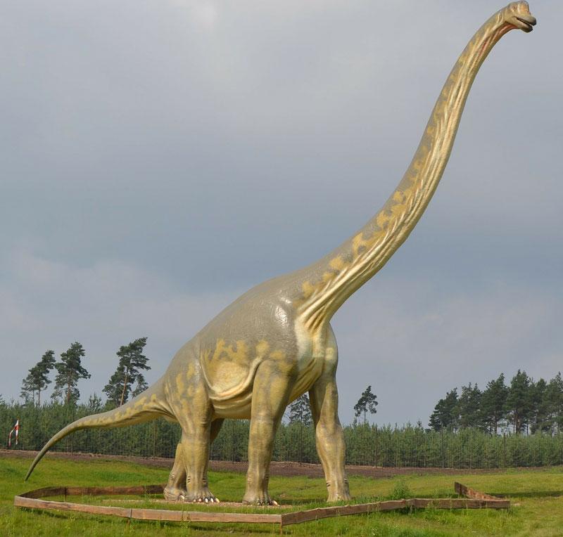 Dinosaurier, Bohmte